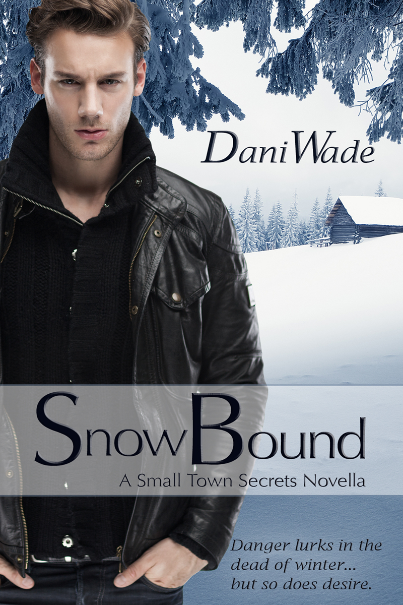 Snow Bound, Small Town Secrets, novella, romance, cover artist